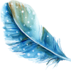 cropped-blog-feather.png